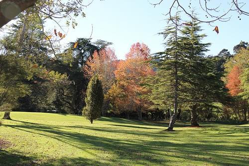 Tangiwai Reserve