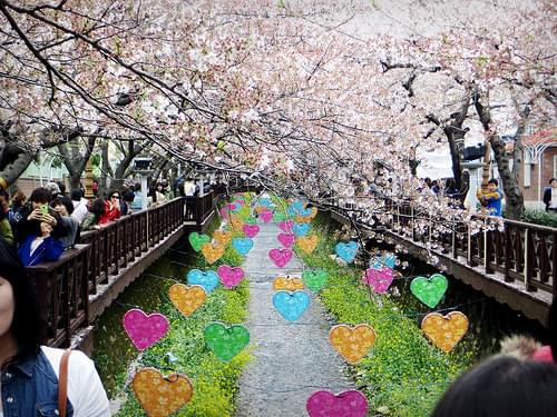 So beautiful. Yeojwacheon Romance Bridge