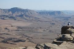 The overlook at Mitzpe Ramon