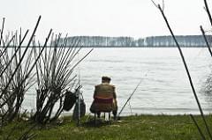 Pesca nel Danubio #1