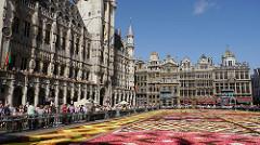 Bruxelles, Grand-Place - Tapis de  Fleurs 2012