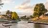 Opawa River, Blenheim