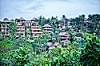 Ubud Neighborhood
