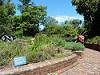 royal botanic gardens in melbourne - 25