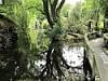 Willowbank Wildlife Reserve 10