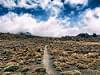 Into the beyond, Tongariro National Park